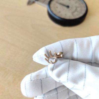 Diamant Anhänger 6 Krappen