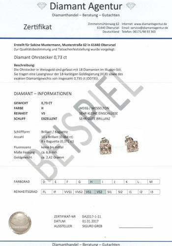 Zertifikat Muster2 350
